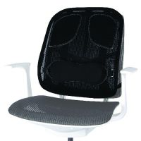 Fellowes Professional Series Mesh Back Support Black 8029901