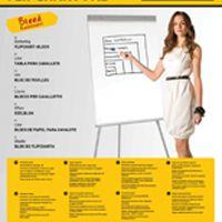 Bi-Office Flipchart Pad A1 Plain FL010101