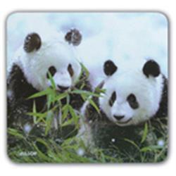 Allsop Eco Mouse Pads Pandas